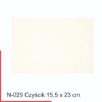 n-029-czyscik-22-x-15-cm-foliggo-importer-folii